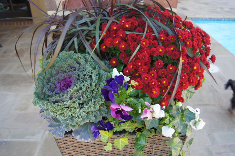 fall-container