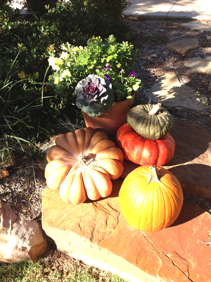 small-container-with-pumpkins
